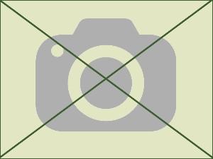 pas de photo